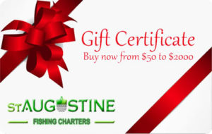 St Augustine Gift Card